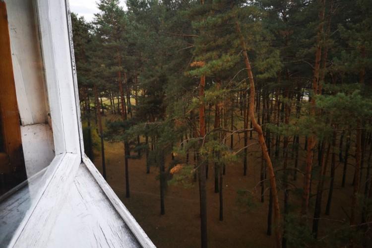 квартира на сутки, Светлогорск, Первомайский мкрн.  63